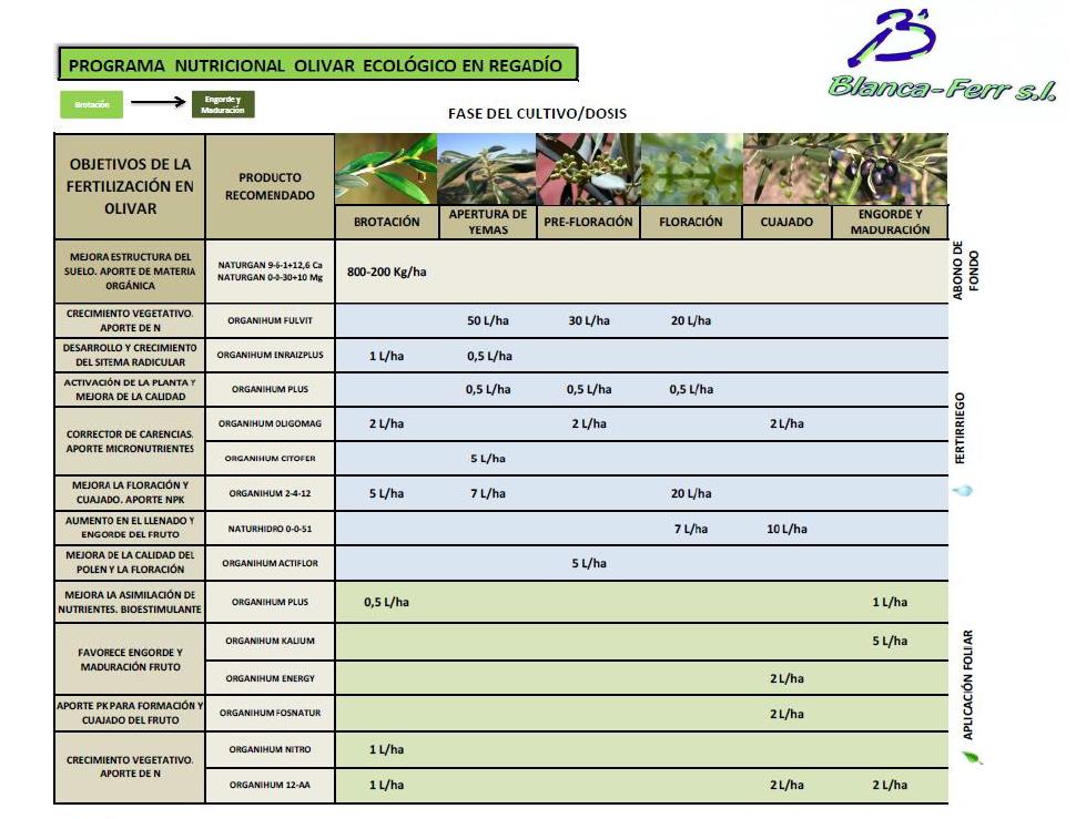 programa-nutricional-olivo-ecologico